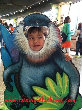 Becky from PA: We went to the zoo! It was a beautiful day and Earth day and we took our kids plus 2 neighbor kids and had a ball at the Philadelphia zoo!