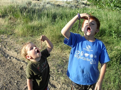 Britney from WY: Eating worms!