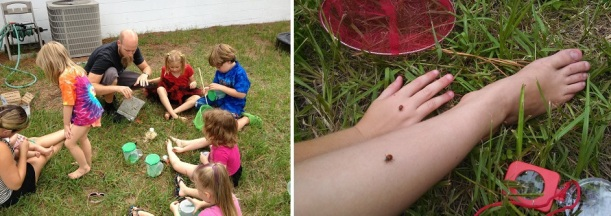 From Chronically Sick Manic Mother: We had a ladybug party and released 3,000 ladybugs amongst a bunch of kids for my daughters eighth birthday.