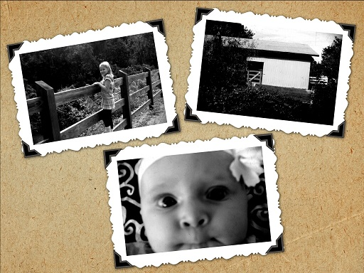 From Chronically Sick Manic Mother: This week I have been playing with my pinhole camera app. It gives real true black and whites and Its helped me realize what the lighting is in regular color pictures too! This is the kid...a cool barn and Princess P.